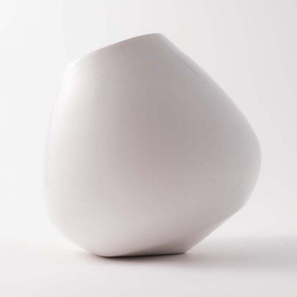tulip bianco